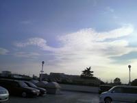 鳥のようにみえる雲.JPG