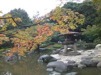 FURUKAWA1.jpgのサムネール画像