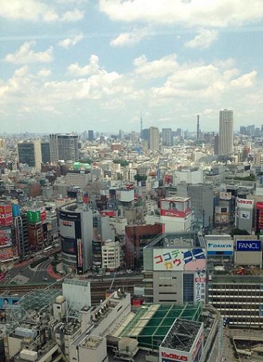 新宿エルタワー.jpg