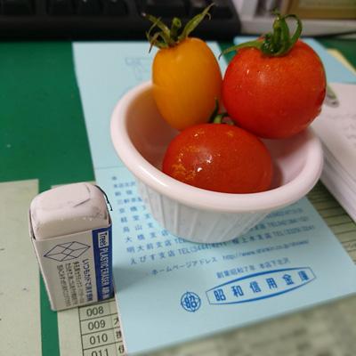 瀬田さんのトマト