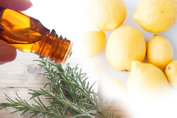 ローズマリーとレモンのアロマイメージ