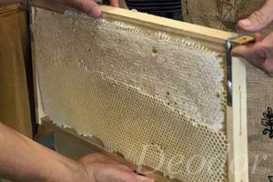 ハチが巣を作る木枠