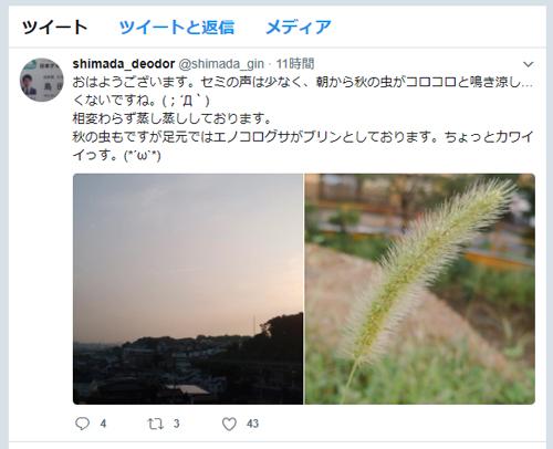島田のツイッター