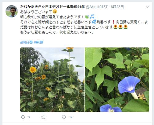 田中のツイッター