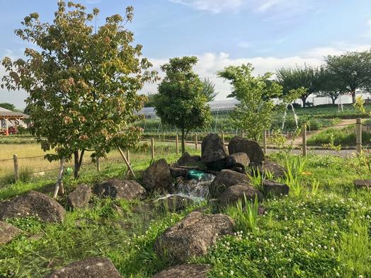 都市農業公園1