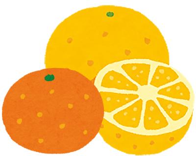 柑橘系のフルーツ